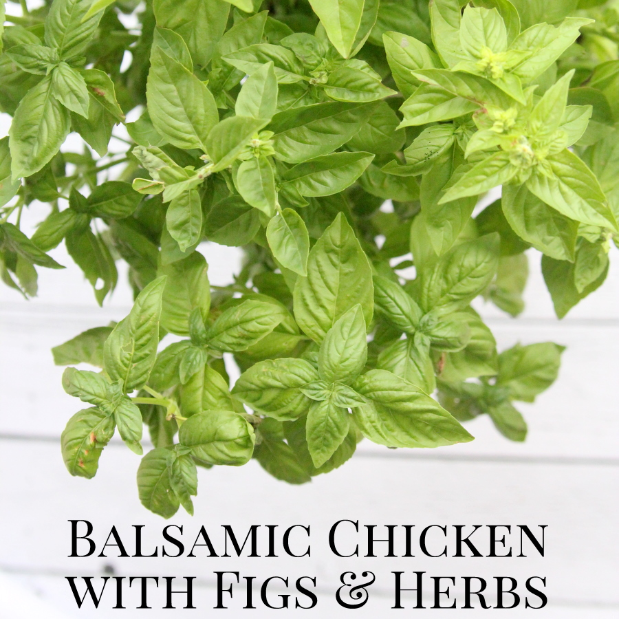 freezer crockpot dinner recipe- balsamic chicken with figs and herbs