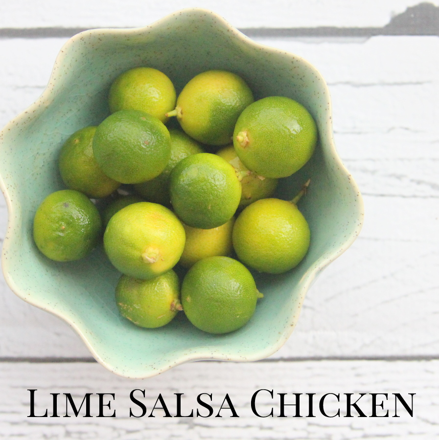 freezer crockpot dinner recipes- lime salsa chicken