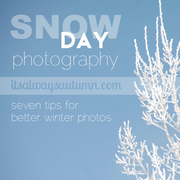 snowy day photography tips