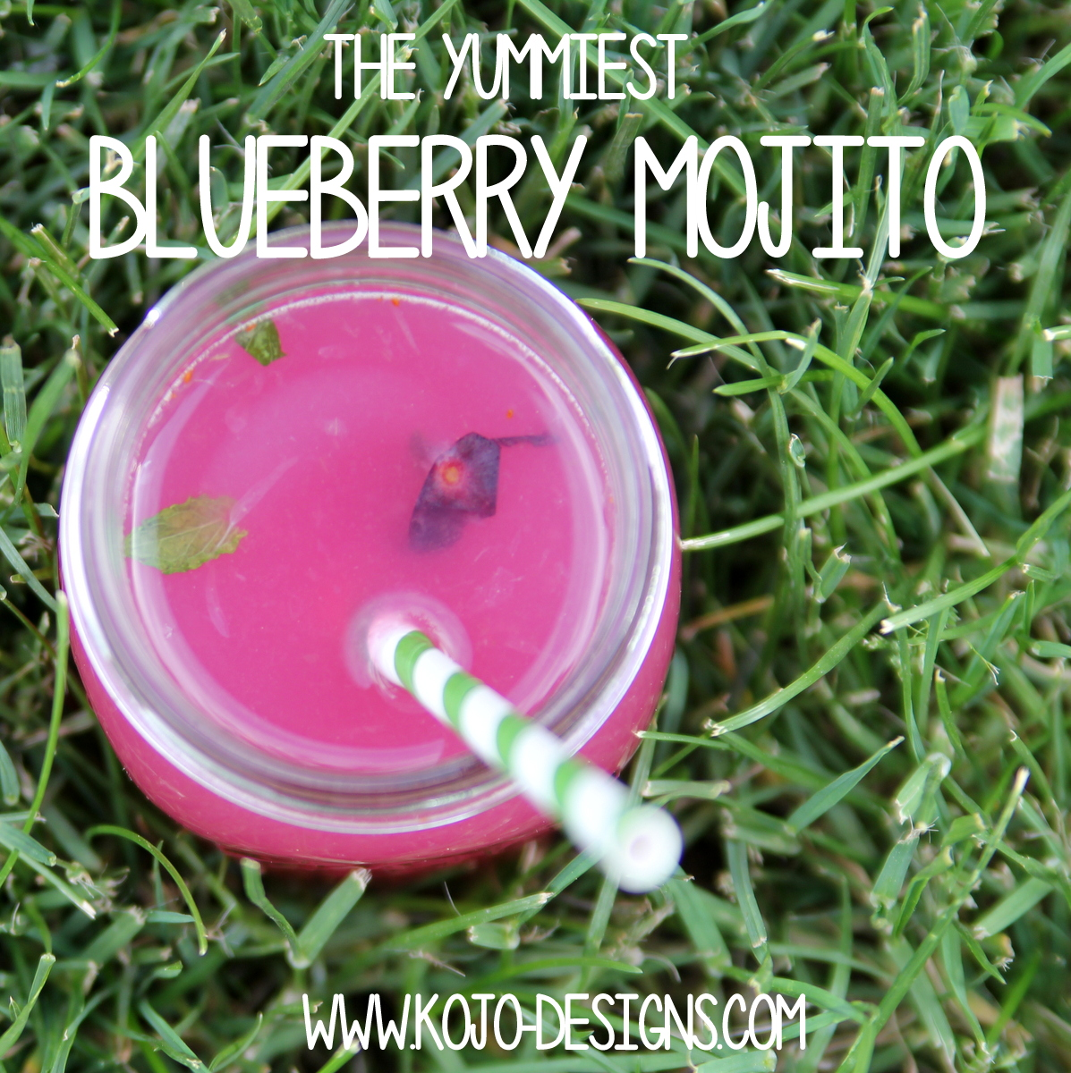 the best blueberry mojito recipe