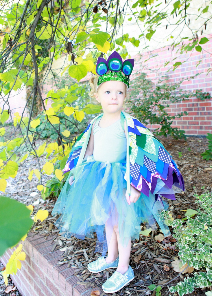 princess-y peacock halloween costume