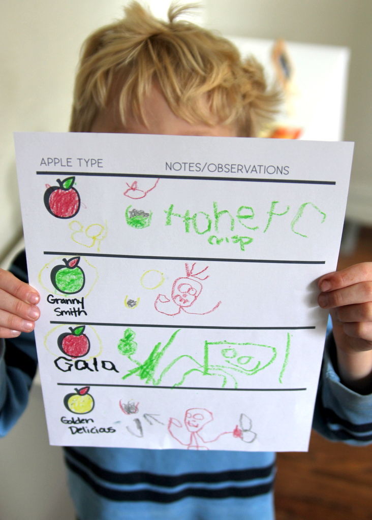 apple taste test free printable chart