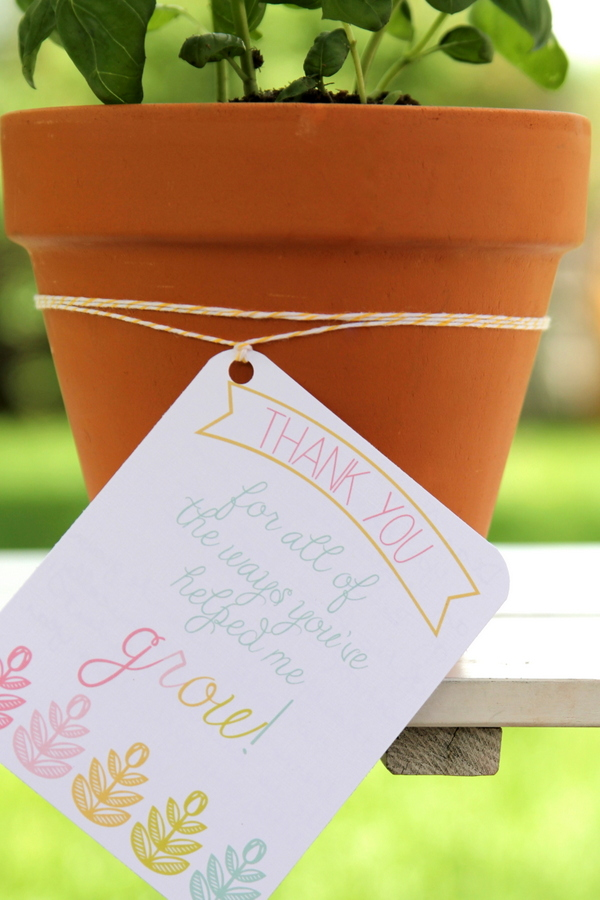 dipped planter pots