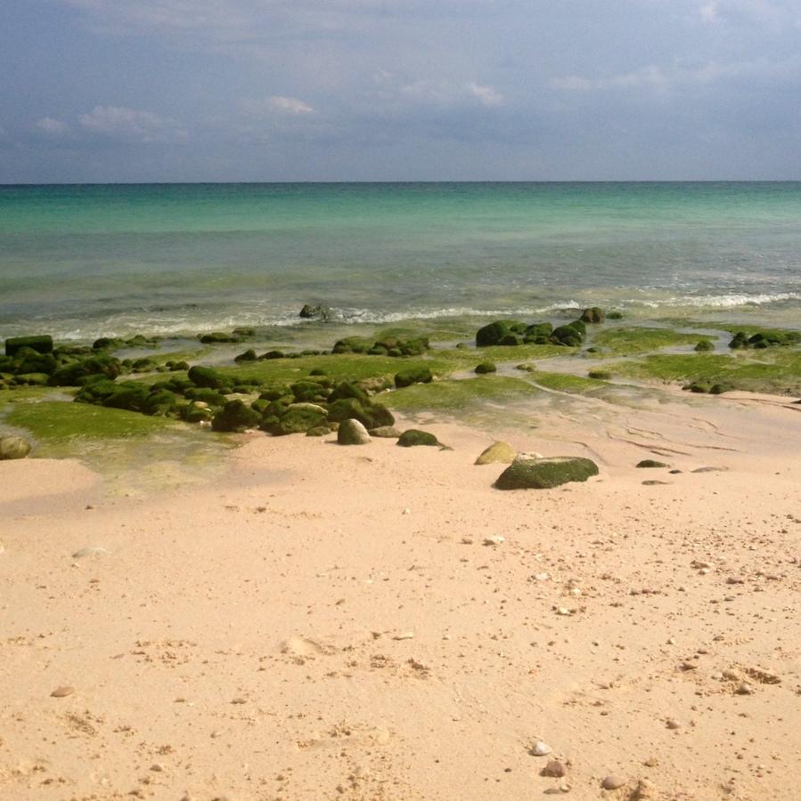 beach oman