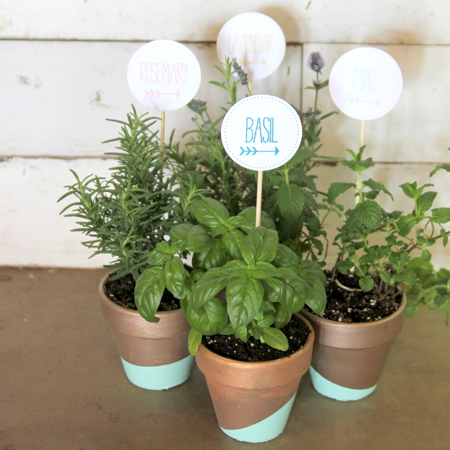dipped herb pots with free teacher appreciation tags