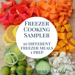 freezer cooking sampler- ten different freezer meals