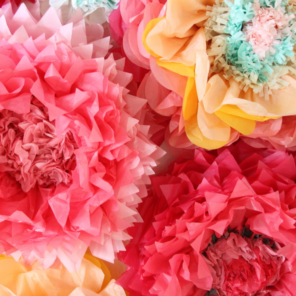 How to make giant tissue paper flowers mightylinksfo