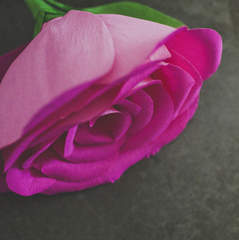 the prettiest paper flower tutorials
