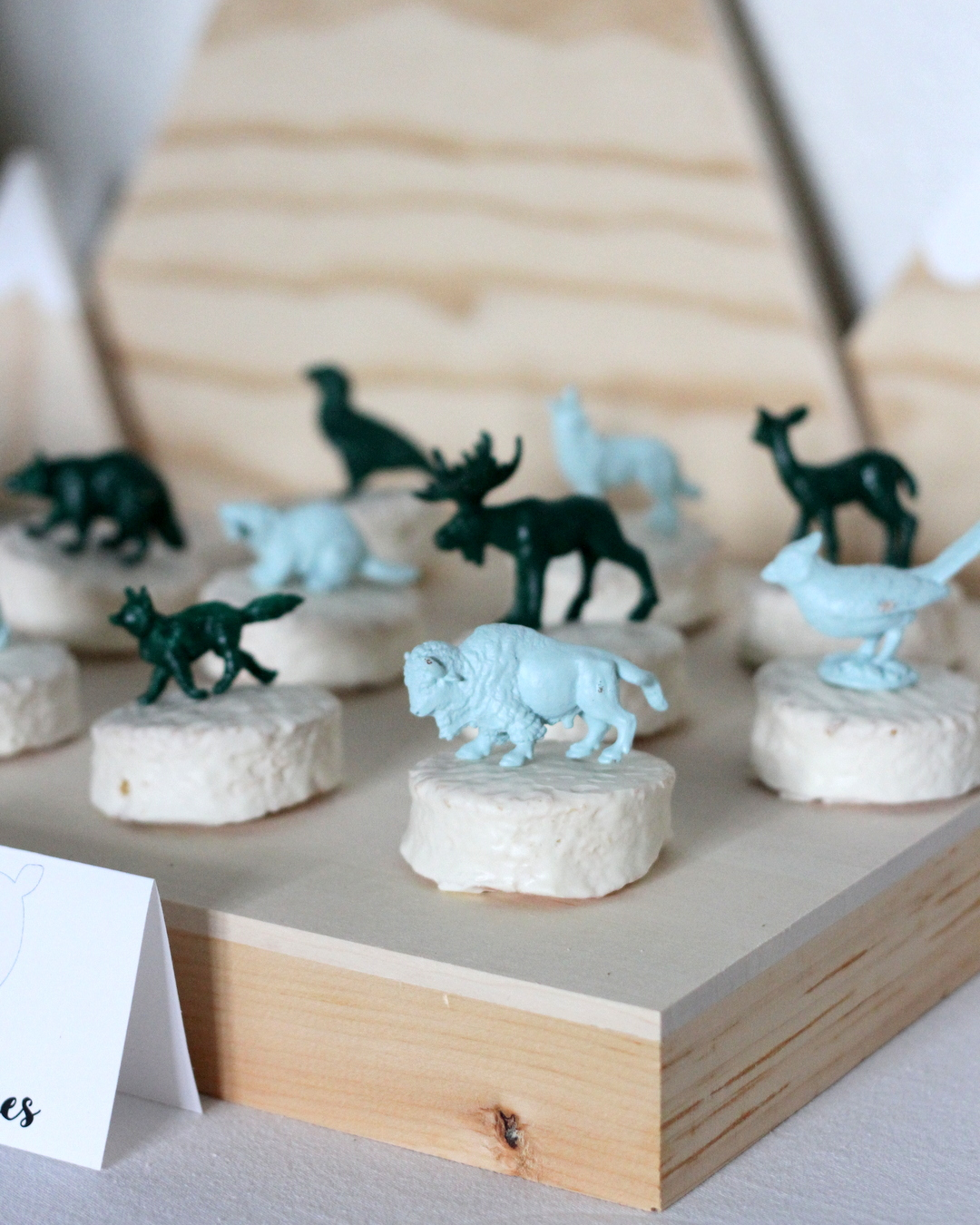mountain-y bear themed kid's birthday party (in black, white, green and wood tones)
