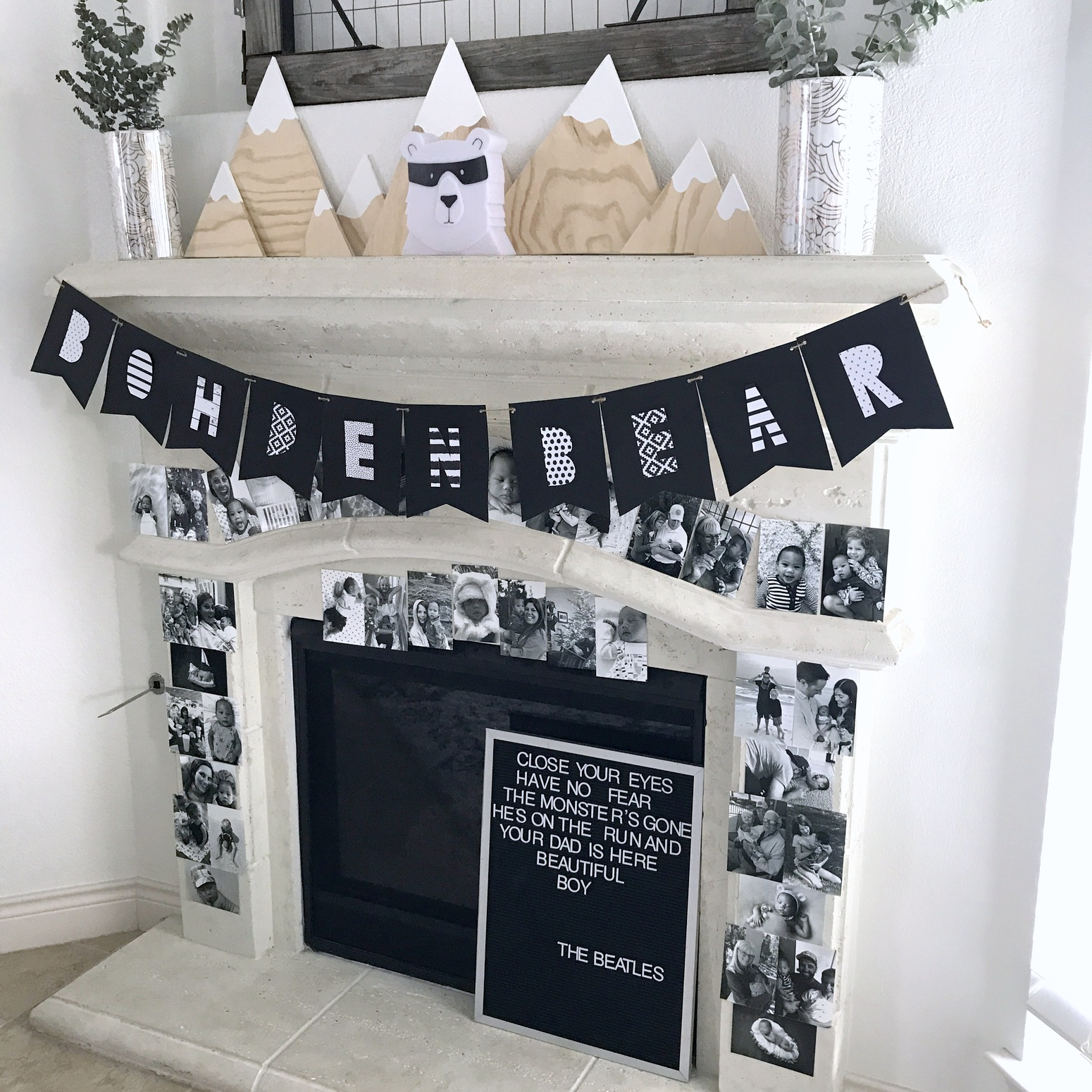 mountain-y black and white bear party