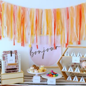 paris birthday party ideas