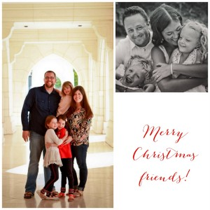 merry christmas friends