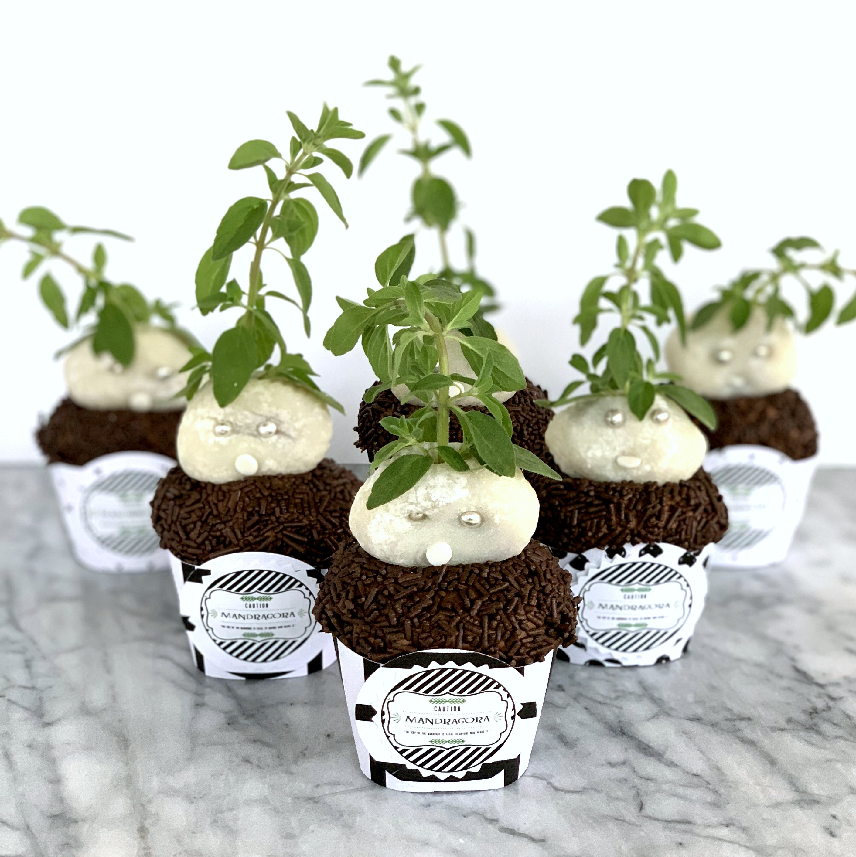 """Harry Potter Party! How to make Mandrake cupcakes (with free printable """"Mandragora"""" labels)"""